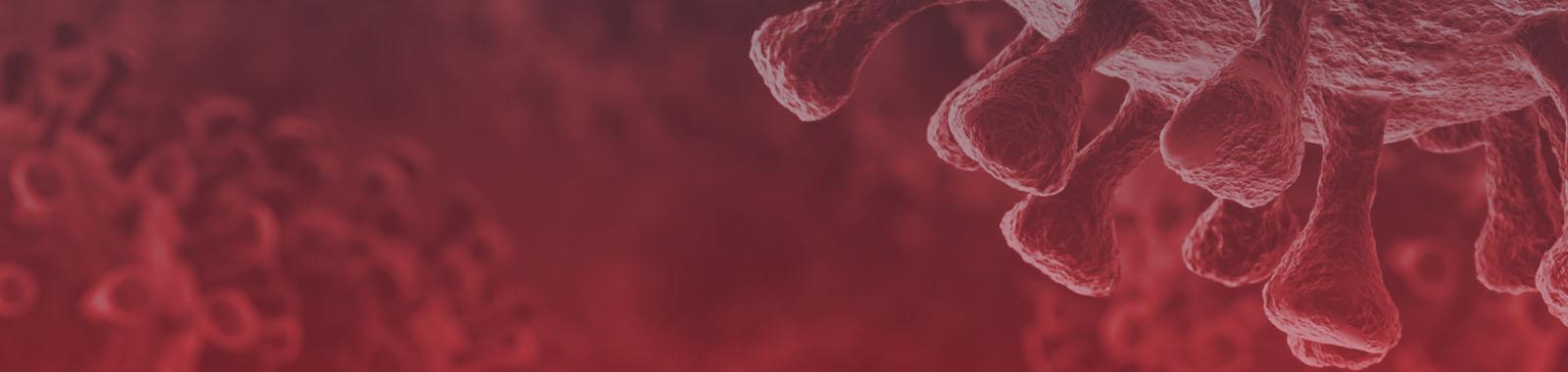 Enfrentando o Coronavírus  COVID-19